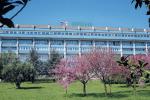 Ospedale di Lamezia, avviate le procedure per l'assunzione di nuovi medici