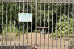 A Vibo Valentia Villa Gagliardi chiusa, le foto del giardino dei nobili diventato un disastro