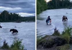 Alaska, lotta tra un uomo e un orso: la contesa per un salmone appena pescato il video caricato sui social a fine luglio, è tornato a circolare - Dalla Rete
