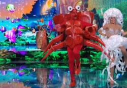 «Ballando con le stelle», l'improbabile mise da granchio di Costantino della Gherardesca Il conduttore televisivo si è esibito con Sara Di Vaira - Corriere Tv