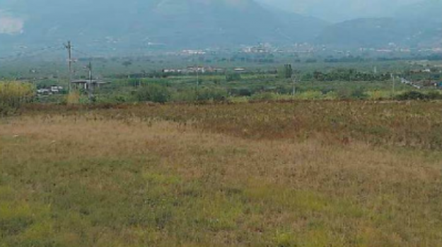 Area industriale, Catanzaro, Calabria, Economia