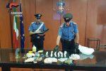 Cosenza, 900 grammi di cocaina e 12mila euro nel controsoffitto: arrestati mamma e figlio