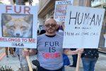 Delitto del regista messinese in America, omicida in fuga: caccia all'uomo a Los Angeles