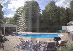 Svegliato da un orso mentre dorme in piscina: invece di scappare gli scatta una foto Risveglio traumatico per il proprietario di una villa nel Massachusetts che si era appisolato sul lettino - Dalla Rete