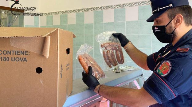 carne, macellerie, Cosenza, Calabria, Cronaca