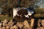 """A Noto la mostra """"Born in Italy"""": riflettori sugli antichi semi autoctoni"""