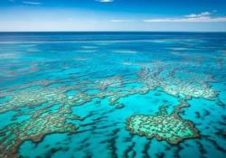 Australia: ecco com'è stato il primo volo «verso il nulla» Il 10 ottobre è decollato da Sydney il primo volo «verso il nulla» di Qantas, 7 ore di viaggio senza destinazione - CorriereTV