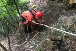 Cane cade in un dirupo a Cosoleto, salvato