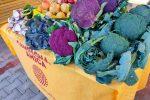 Sana alimentazione per prevenire il tumore al seno, l'iniziativa di Coldiretti a Catania