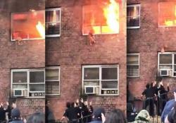 New York: il gatto si lancia dall'appartamento in fiamme (e si salva) Il felino è riuscito a scappare da un edificio in fiamme di Harlem, saltando da una finestra - CorriereTV