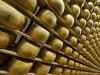"Parmigiano Reggiano, oltre 5 mila visitatori per ""Caseifici Aperti"""