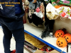 "Addobbi per Halloween e Natale, maxi sequestro a Messina: ""Merce non sicura"""