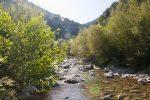Bisignano, veleni nel fiume Mucone: il 13 ottobre marcia di protesta per chiedere chiusura depuratore