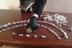 Spaccio di droga a Cosenza, arrestato un giovane pusher