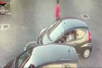 Cocaina e hashish in provincia di Palermo, retata con 7 arresti - Video