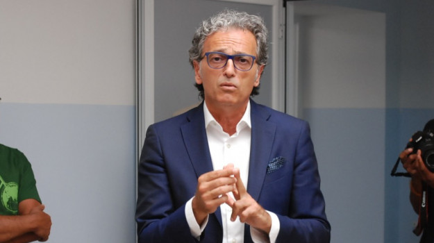Gino Strada, Giuseppe Zuccatelli, Saverio Cotticelli, Calabria, Politica