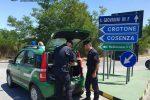 Bosco incendiato a San Giovanni in Fiore, individuato il colpevole
