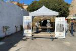 Coronavirus, a Palermo in campo l'Esercito per screening con tamponi