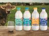Granarolo sostiene diffusione Immuni su etichetta bottiglie di latte