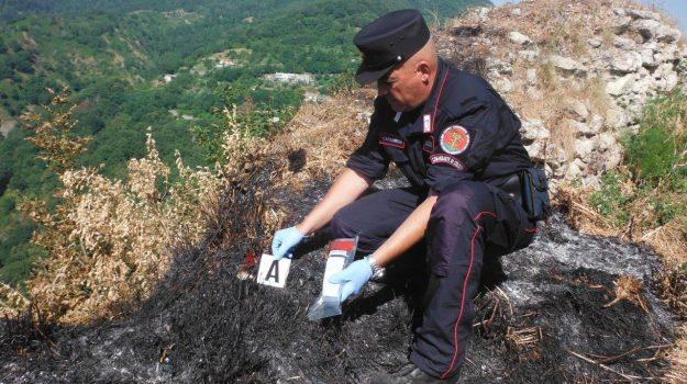 albidona, incendio, Cosenza, Calabria, Cronaca