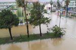 Ancora maltempo nel Crotonese: a Cirò alberi abbattuti, frane e fango sulla Provinciale