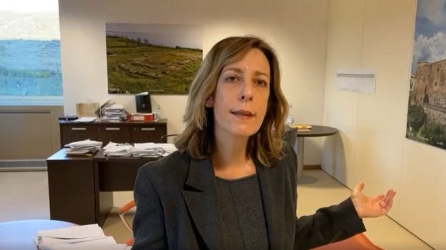 vaccini, Silvia Vono, Calabria, Politica