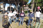 """Messina, """"Uniti per Torre Faro"""" veste di Natale il borgo marinaro"""