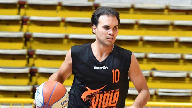pallacanestro viola, Reggio, Sport