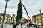 L'installazione dell'albero di Natale a Piazza Cairoli. Il video