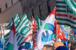 """Forestazione in Calabria, nuovo appello dei sindacati al governo. """"Servono più fondi"""""""