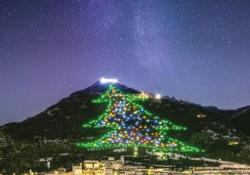 Acceso l'albero di Natale di Gubbio, il più grande del mondo Lunedì 7 dicembre è stato acceso sul monte Ingino uno dei simboli a cui gli eugubini, e non solo, tengono molto - CorriereTV