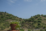 Agriturismo made in Sicily