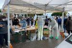 Tamponi, test e registrazione per rientrare in Calabria: ecco l'ordinanza