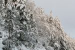 Neve e ghiaccio imbiancano i monti della Sila