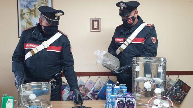 arresti domiciliari, droga, giardini naxos, messina, Messina, Cronaca