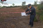 Scalea, controlli dei carabinieri forestali: denunce e sequestri