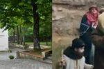"I Re Magi approdano a Laino Borgo, la ""Gerusalemme d'Italia"" – VIDEO"
