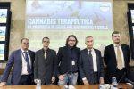 Dalla cannabis terapeutica all'attacco al Governo Conte sulla Xylella: le battaglie di Lello Ciampolillo