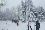 Maltempo, la Sila si risveglia sotto una coltre di neve