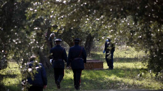 campagna, carabinieri, castrovillari, donna ucraina, Cosenza, Cronaca