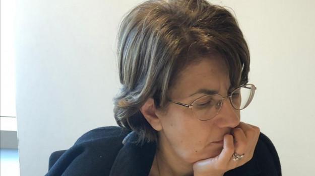 alveari, furto, sibaritide, Rosa Silvana Abate, Cosenza, Politica