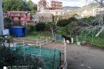 Messina, il dramma dei cavalli maltrattati in stalle improvvisate: denunciato il responsabile