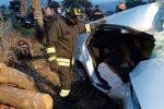 Tiriolo: perde il controllo dell'auto, finisce fuori strada e abbatte un albero
