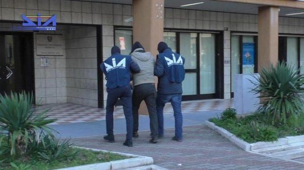 'ndrangheta, arresti, calabria, operazione basso profilo, Franco Talarico, Lorenzo Cesa, Calabria, Cronaca