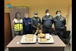 Cocaina tra la frutta dell'Ecuador, sequestrati 7 kg al porto di Catania