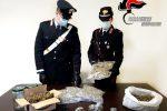 Taurianova, 1,8kg di marijuana dietro tende da campeggio: arrestato un 43enne