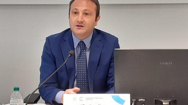 camere di commercio, crotone, imprese, vibo valentia, Alfio Pugliese, Sebastiano Caffo, Catanzaro, Economia