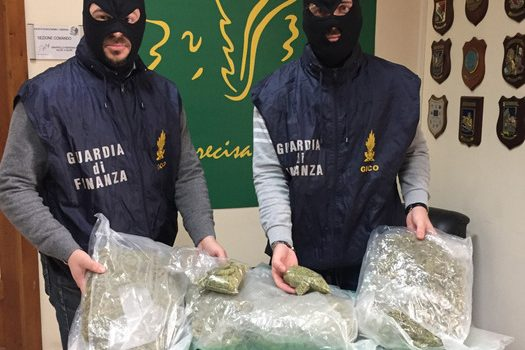 catania, marijuana, Sicilia, Cronaca