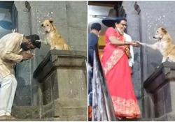 India: il cane «benedice» i fedeli all'uscita dal tempio Il video registrato a Mumbai e pubblicato sui social non poteva che diventare virale - CorriereTV
