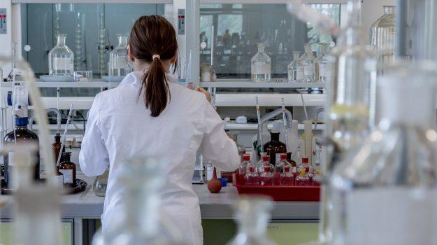 anticorpi, cnr, coronavirus, Sicilia, Cronaca